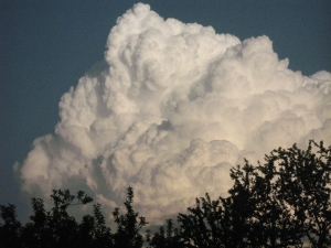 bloomington cloud